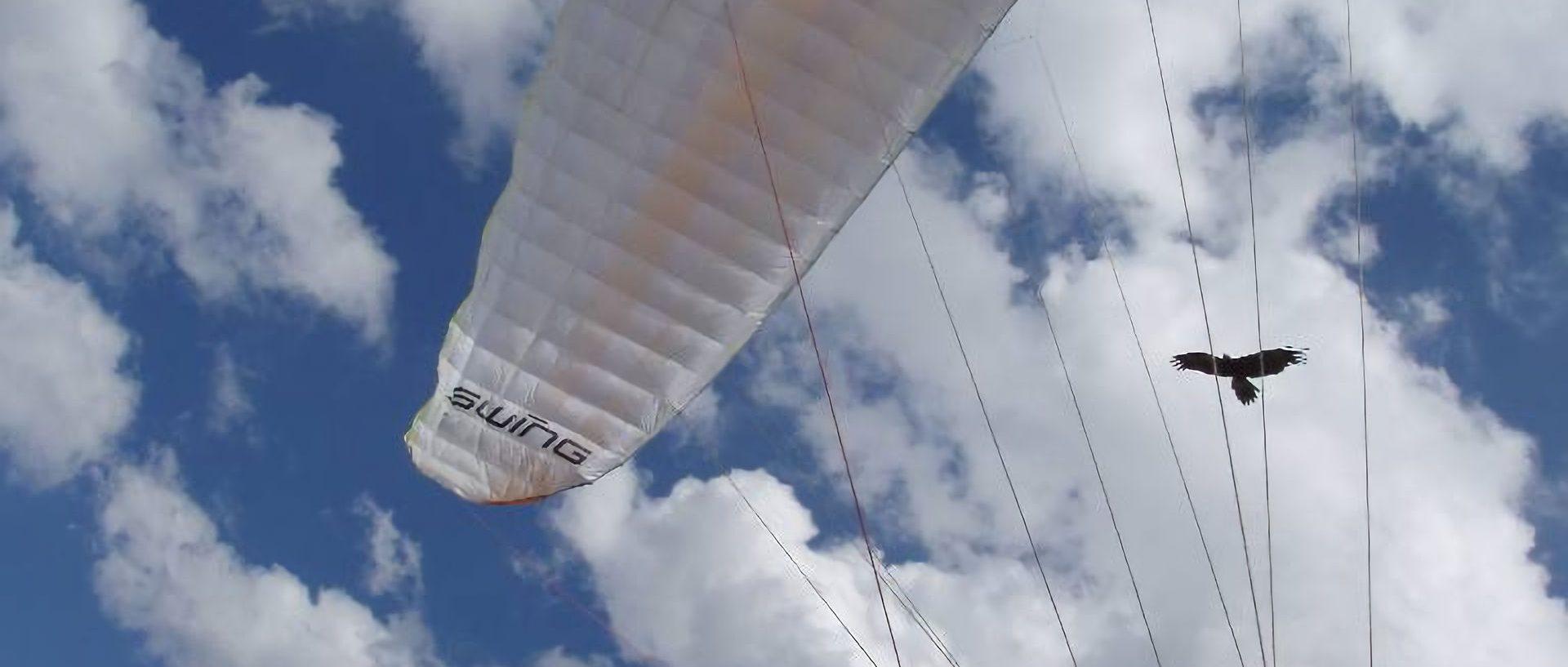 2009 australia 01